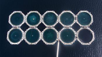 Aquafuture AS ble tidligere i november kåret som gasellevinner i Nord. Selskapet produserer miljølaks i lukkede merder. Illustrasjonsfoto: Aquafuture