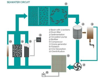 The Cube uses a sophisticated RAS that requires less than 1% daily water replenishment. Click on image to enlarge. Graphic: SEAWATER Cubes.