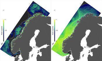 Figurene viser hvor egnet ulike havområder er for oppdrett av laks. I figuren til venstre er det tatt hensyn til strømhastighet. I figuren til høyre er det tatt hensyn til temperatur med tanke på hvordan denne påvirker tåleevne for strømhastighet. Sorte områder er i utgangspunktet uegnet for laks på grunn av for høy strøm, men ulike typer oppdrettsanlegg kan gi skjermingseffekt slik at det likevel kan være mulig med oppdrett også i disse områdene. Hvite linjer viser dybdekontur (100, 200, 300 og 400 meter). Illustrasjon: Havforskningsinstituttet. (Trykk på bildet for en større utgave).