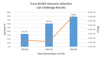 Results of BCWD laboratory challenges conducted by the USDA on Troutlodge's May strain. The graphic shows generational improvements in survival from 2015 to 2019 as a result of genomic selection. Click on image to enlarge. Graphic: Hendrix Genetics.
