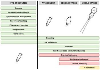 Diagrammet viser hvordan de ulike lusestadiene målrettes med forskjellige strategier. Forebyggende metoder er i grønt, mens de vanligste metodene for fjerning av lus er i rødt og oransje. Kilde: Barett et al. 2020. Klikk for større.