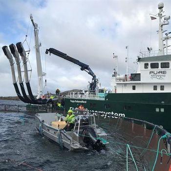 «Lautus» har kapasitet til å ta oppimot 150 tonn fisk i timen. Foto: Bjørnar Blaalid.