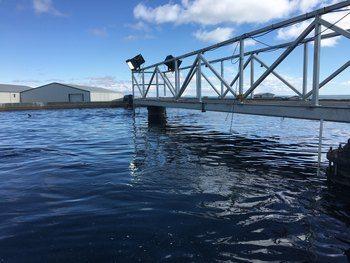 Et av Laxar sine oppdrettsanlegg på Island. Foto: Måsøval