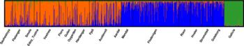 «Slektstre» for berggylt Når forskarane plottar dei genetiske markørane til dei 1025 berggyltene, klumpar dei seg saman etter likskap. Majoriteten av dei nordlege fiskane er éi gruppe (oransje) medan dei sørlege er i ei anna (blå). Dei spanske fiskane skil seg endå meir frå resten i grøn. Klikk for større bilete. Kilde: HI.