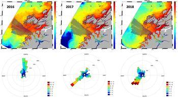 Figuren viser spredning av lakselus i juni i tre ulike år: 2016, 2017 og 2018. Grått området viser utvandringsruten til smolt fra Namsenelva. Spesielt i 2016 overlapper dette gråe området med lakselus (rød farge), dermed er det høyere risiko for dødelighet hos laksesmolten dette året sammenlignet med de andre årene. Under kartene er en oversikt over hvor vinden kom fra det enkelte året. I 2016 var det mest vind fra nord, mens i 2017 og 2018 kom vinden fra sørøst. Klikk for større bilde.