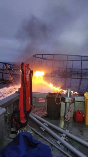 This fire on the pen allowed around 50,000 salmon to escape. Photo: Huon Aquaculture.