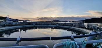 Utsikt fra Ecomerden. Foto: Rafal Lamert, driftstekniker i Sulefisk.