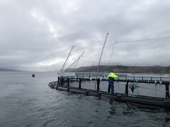 OSH operates at a reduced stocking density of between 0.1-1% fish. Click on image to enlarge. Photo: OSH.