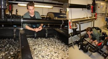 Student som tar prøver i biofilter og sjekker pumpe. Foto: Odd Ivar Lekang/NMBU