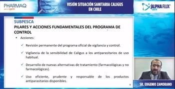 Subpesca también estuvo presente explicando el impacto del Caligus en Chile y la necesidad de abordarlo con este tipo de fármacos. Foto: Salmonexpert.