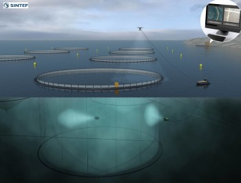 SINTEF envisages a future of unmanned, exposed fish farms. Operations could be carried out autonomously using ROVs, unmanned surface vessels and drones controlled from shore. Click om image to enlarge. Illustration: SINTEF Ocean AS.