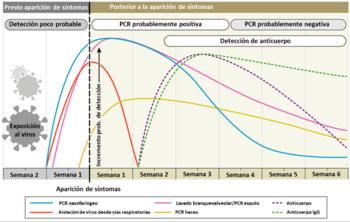 Figura 3. Variación estimada en el tiempo de diagnóstico para la detección de SARS-CoV-2, desde el inicio del contagio (Modificado de Sethuraman et al., 2020).