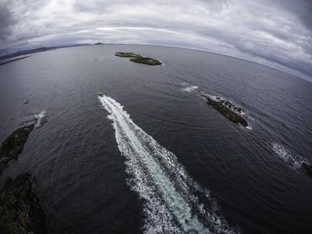 Visningssenteret har ambisjoner om å få mye mer folk ut på merdkanten til neste år og ønsker å få til en ny besøksrekord. Her ser du en av RIB-turene deres. Foto: Bjørøya.