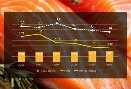 Evolución lapso engorda (meses), FCRb y peso cosecha (Kg) (valores peso planta). Fuente: Skretting.