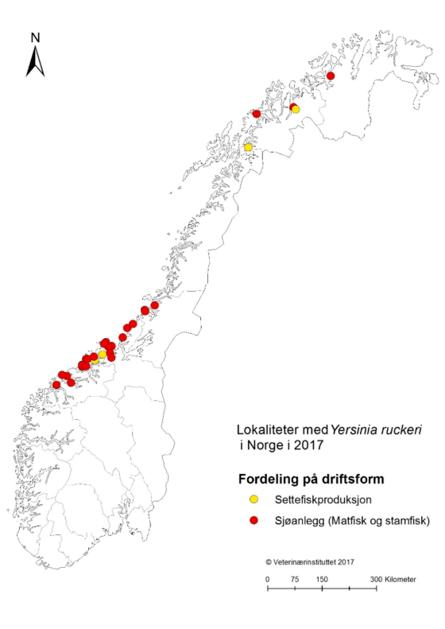 Figur 1. Lokaliteter med yersiniose i 2017 registrert ved Veterinærinstituttet.