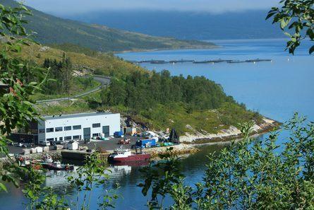 Northern Lights Salmon i Grovfjord har satt i drift en helelektriske servicebåt i havbruksnæringen. Foto: Sigbjørn Larsen