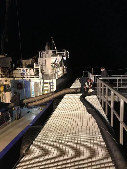 Tirsdag kveld jobbet ansatte på Salangfisk sent, ettersom de skulle ha sin første levereing av storsmolt. Foto: Salangfisk.