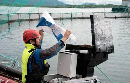 Rognkjeksa i merdene klarer seg ikke bare på å beite lus av laksen. Den må også ha eget fôr, og her fyller driftstekniker Tor Kristian Løvmo opp en av de mange automatene på Lismåsøy ved Brønnøysund. Foto: SinkabergHansen.