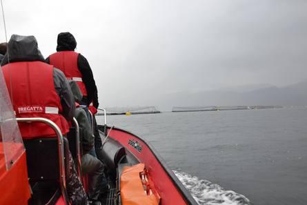 På vei ut til merdkanten på Lingalaks sitt anlegg i Saltkjelen. Foto: Anette Elde Thomsen/Kyst.no.