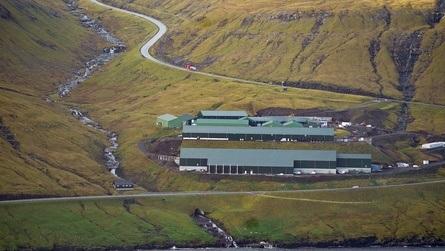 Smoltanlegget og hovedkvarteret til selskapet ligger på Fútaklettur på Færøyene, og de to siste årene har oppdrettsselskapet gjort store utbygginger og oppgraderinger på anlegget. Klikk for større bilde. Foto: Hiddenfjord.