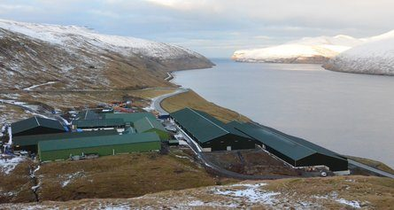 Smoltanlegget og hovedkvarteret til selskapet ligger på Fútaklettur på Færøyene, Klikk for større bilde. Foto: Hiddenfjord.