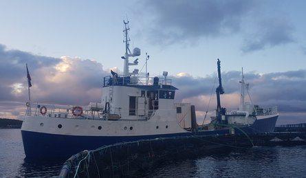 «Oddøy» er foreløpig den eneste brønnbåten til Sleneset. Foto: Sleneset Aqua Service.