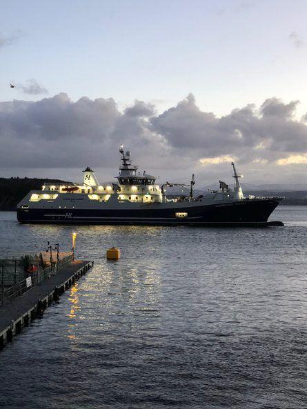 «Norwegian Gannet» tester nå ut slaktemetoden om bord ved Sekkingstads ventemerder. Foto: Jannicke Sekkingstad.