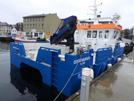 Den nye katamaranen til Svanøy Havbruk skal brukes til daglig drift ved selskapetslokaliteter.Foto: Ola Sveen.