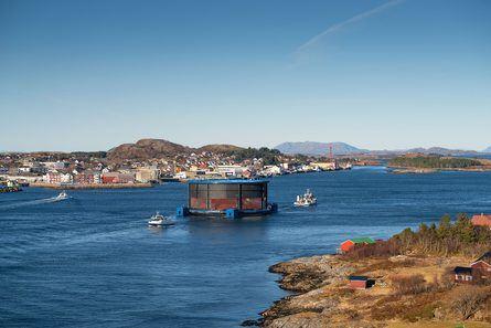 Om ikke lang tid skal denne merden være bolig for rundt 200 000 laks. Foto: Steinar Johansen.