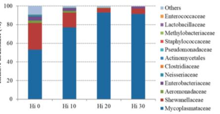 Imagen 2: Abundancia relativa (%) de los géneros bacterianos más prevalentes en los disintos grupos. Fuente: modificado de Romoldi y col., 2019.