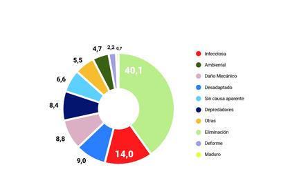 Gráfico 3. Clasificación de mortalidades según causa Primaria en trucha arcoíris, SIFA primer semestre 2019. Fuente: Sernapesca.