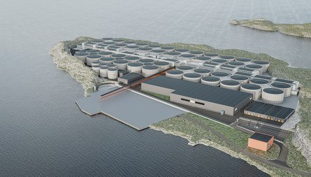 An illustration of the planned facility, which is intended to produce 36,000 tonnes of salmon annually when the project is complete. Click on image to enlarge.