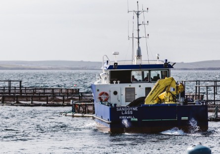 The Gairsay Sound, left, and the Sandoyne Lass, above, have names inspired by the Orkney geography. SSF is looking for something in the same tradition for its new vessel, which will service a farm off Hunday, Orkney. Photos: SSF.