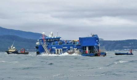 El Centro de Cultivo de Salmónidos (CES) Caicura, contaba con con 875.144 peces de la especie salmón Atlántico con un peso promedio de 3,828 kilos. Imagen: Sernapesca.