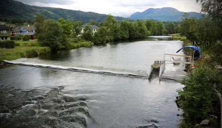 A barrier on the River Etne forces salmon through the fish trap on the right. Photo: IMR.