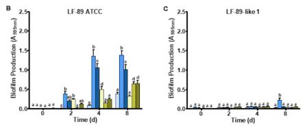 Formación de biofilm en P. salmonis cultivadas bajo diferentes concentraciones de NaCl y citrato férrico. Cuantificación de biofilm de P. salmonis LF-89 (B) y aislados LF-89-like 1 (C) cultivados durante 0, 2, 4 y 8 días. Los valores se presentan como la media ± SEM (n = 5). Letras distintas indican diferencias significativas (p <0,05). Imagen: Santibañez y col., 2020.