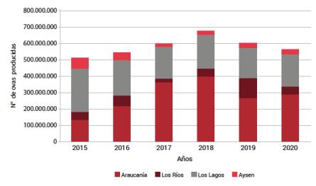 Volumen total de ovas producidas por región. Fuente: SIFA 2021/Sernapesca.