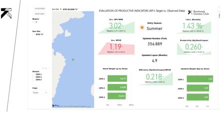 Figura 7: Producción de salmón con diferentes cepas comerciales – ejemplo en Chile: Sistema de Visualización con fines de seguimiento y control productivo para Indicadores Clave de Desempeño - KPI's)
