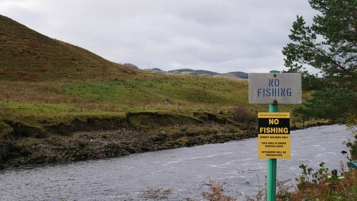 Angling groups oppose 'flawed' conservation limits