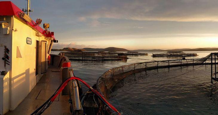 Shetland ship operator to merge with Norwegian firm