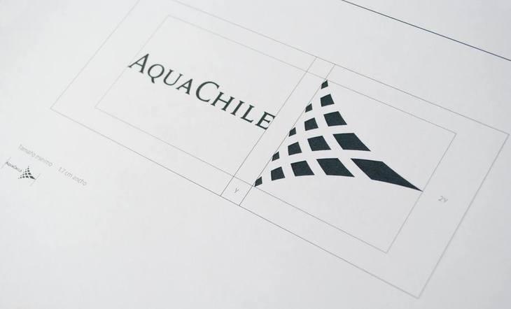 Aquachile aumenta estimación de utilidad tras joint venture con Benchmark