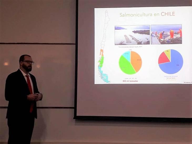 Investigador Incar caracterizó aislados chilenos de R. salmoninarum