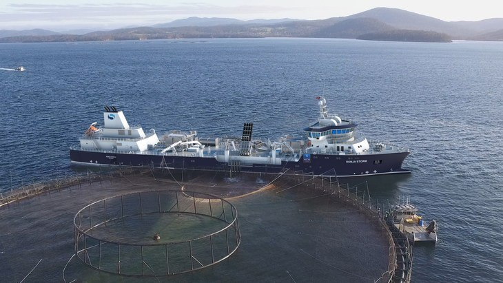 Ronja Storm nears Tasmania after months of delays