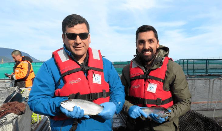 ¿Es suficiente la investigación científica sobre el salmón coho chileno?
