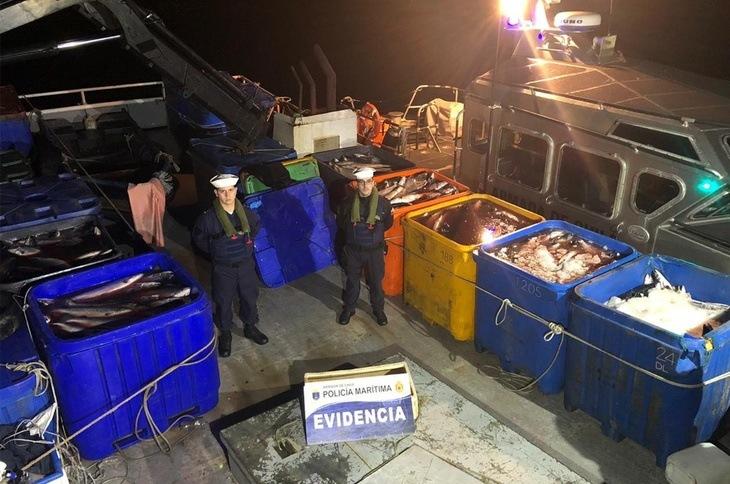Quellón: Armada incauta 25 toneladas de salmón