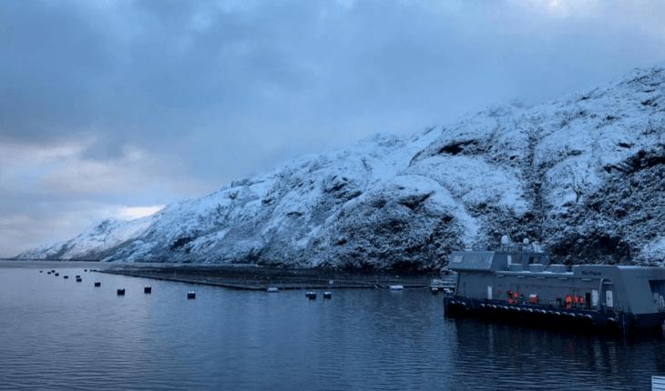 Multiexport tendrá 100% de sus fondos marinos sin residuos inorgánicos