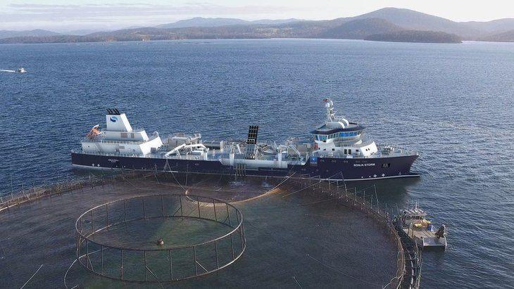 Wellboat más grande de Solvtrans retrasa inicio de operaciones