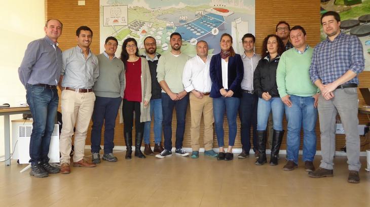 Chile: Academia e industria del salmón se unen para combatir el BKD