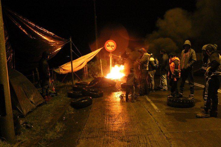 Salmonicultores preocupados por paralización de plantas en Quellón
