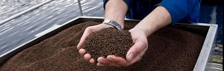 BioMar lidera empresas de alimento en ranking de sustentabilidad